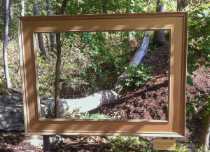 Picture frame in nature