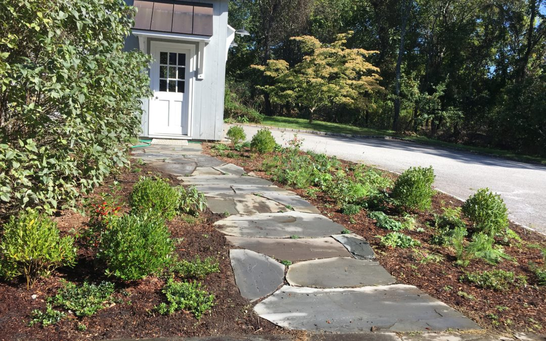 Native Plants and Bluestone Flag Path